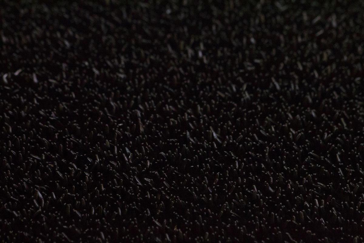 FinnTurf ruohomatto, 95 musta
